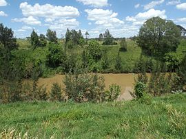 Logan River at Woodhill, Queensland.jpg