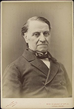 Louis Blanc - Louis Blanc in his last years.