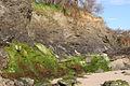 Low cliffs at Harlyn Bay - geograph.org.uk - 1294335.jpg