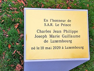 Luxembourg, Arbre du prince Charles de Luxembourg (101).jpg