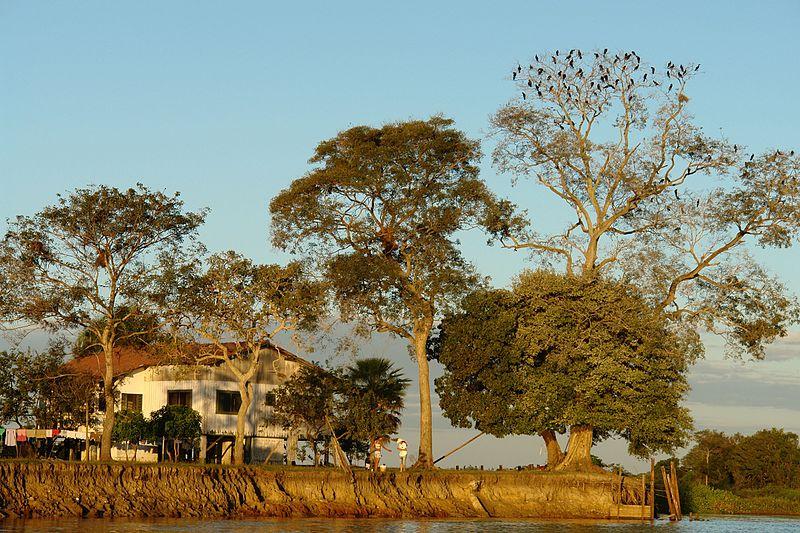 Como é o Pantanal com estiagem