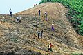 Making field for shifting cultivation.jpg