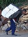 Man Bearing Burden - Shimla - Himachal Pradesh - India (26484604192).jpg