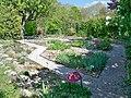 Mane - Prieuré de Salagon, jardin des simples.jpg