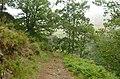 Marão Trail Adventure V (41727942655).jpg