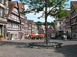Marktplatz Calw1