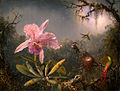 Martin Johnson Heade-Cattleya Orchid and Three Brazilian Hummingbirds.jpg