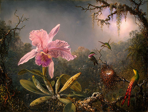 Martin Johnson Heade-Cattleya Orchid and Three Brazilian Hummingbirds