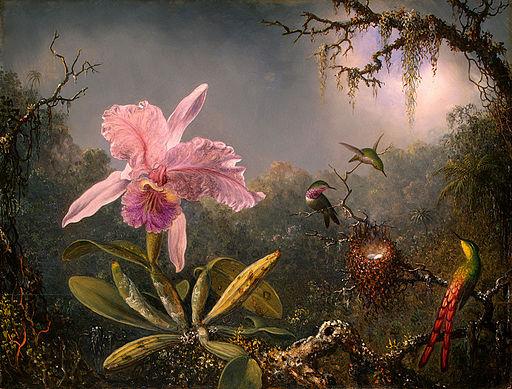 Martin Johnson Heade-Cattleya Orchid and Three Brazilian Hummingbirds