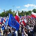 Massive anti govt demo today in Warsaw. (26799690271).jpg