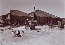 Mawson main base.jpg