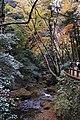 Meiji no Mori Minoh Quasi-National Park Minoh Osaka pref Japan22s3.jpg
