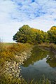 Merced National Wildlife Refuge Deadmans Slough Creek Canal (5428834681).jpg