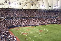 "The H.H.H. Metrodome, showing a white ""grass"" line."