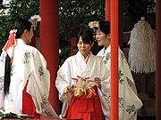 Miko at Ikuta Shrine