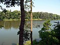 Mogilno, jezioro Mogilenskie.jpg
