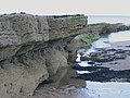 Monks House Rocks - geograph.org.uk - 717236.jpg
