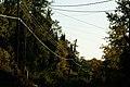 Morning Wires (1476626218).jpg