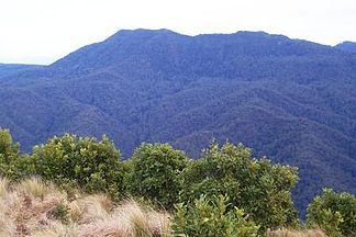 Der Mount Royal vom Mount Cabrebald vom Barrington-Tops-Nationalpark