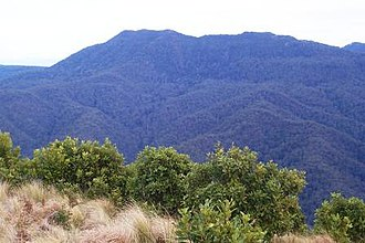 Mount Royal Range - Mount Royal photographed from Mount Cabrebald, Barrington Tops National Park.