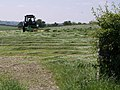 Mowing the grass - geograph.org.uk - 461096.jpg