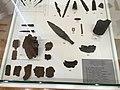 Museum of Vojvodina, interior, exhibits; Muzej Vojvodine, enterijer, exponati 24.jpg