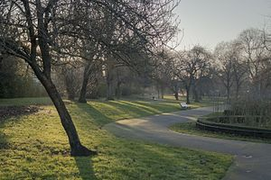 Myatt's Fields Park in winter.jpg