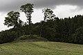 Nørre Snede gravhøj 54121.jpg