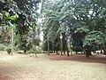 Nairobi Arboretum Park 39.JPG