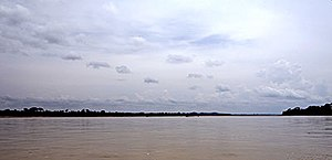 Napo River - The Napo River to the east of Coca