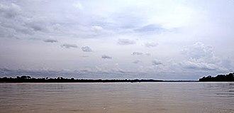 Napo River - The Napo River to the east of Coca