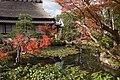Nara 2008-11-22 (3138838672).jpg