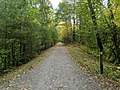 Narrow Gauge Rail Trail, Bedford Springs MA.jpg