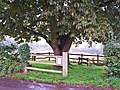 Nature reserve, High Street, Bursledon - geograph.org.uk - 1436569.jpg