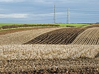 Near North Wold Farm - geograph.org.uk - 1046318.jpg