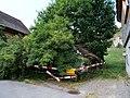 Nebengebäude Mettlenweg 2 Urnäsch P1031036.jpg