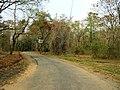 Nedumkayam Reserve Forest, Nilambur - panoramio (2).jpg