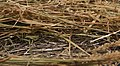 Needlestack and haystack1.jpg
