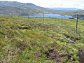 New plantation above Loch Errochty - geograph.org.uk - 496941.jpg