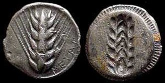 Agriculture in ancient Greece - An ear of barley, symbol of wealth in the city of Metapontum in Magna Graecia (i.e. the Greek colonies of southern Italy), stamped stater, c. 530–510 BCE