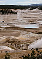 Norris Geyser Basin, Yellowstone National Park (7780234962).jpg