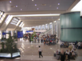 Check-in sector Hall 1 (Terminal 1)