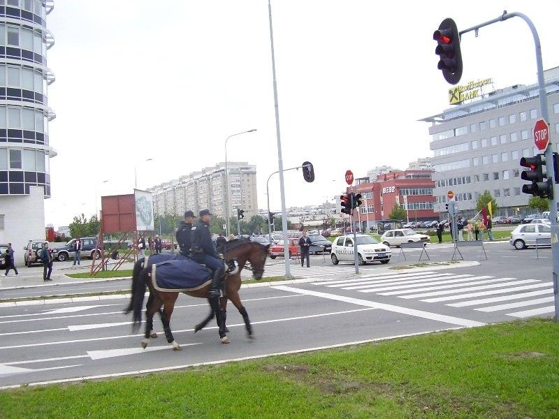 Novi Beograd 2005