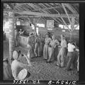 Officers on Mogmog Island. Pilots on liberty at the bar - NARA - 520728.tif