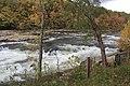 Ohiopyle fall colors - panoramio (12).jpg