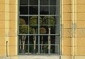 Orangery Schönbrunn - window plants 04.jpg