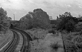 Overgrown and derelict remains of Priestfield Station. 1978. - geograph.org.uk - 1584465.jpg