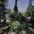 Overzicht - Bergeijk - 20396814 - RCE.jpg