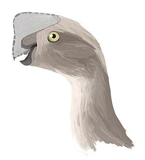 Oviraptor - Artist's restoration