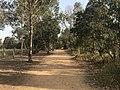 Oxley Creek Canoe Trail, Rocklea, Queensland 02.jpg